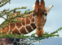 Reisen Simbabwe Nationalparks