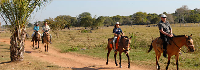 Reiten im Nationalpark Pantanal in Brasilien