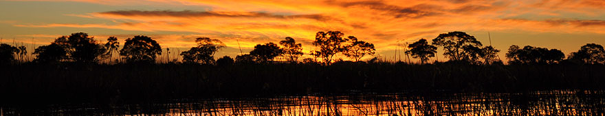 sunset cruise im Okavangodelta