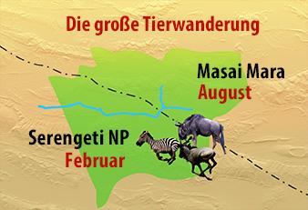 Safari Reisen in die Serengeti
